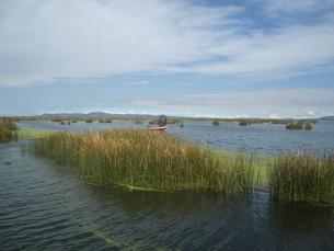 チチカカ湖の写真素材 [FYI00121488]