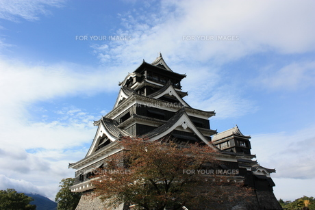 熊本城の写真素材 [FYI00121513]