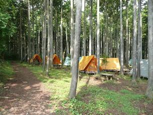 キャンプ場の写真素材 [FYI00121559]