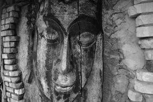 目を閉じる仏の写真素材 [FYI00121802]