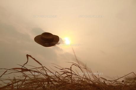 枯れ草公園で夕日を背景に飛んでいく麦藁帽子の写真素材 [FYI00122027]