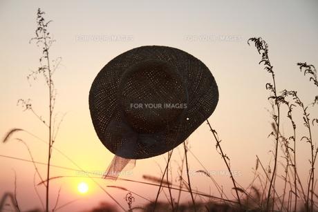 夕日にシルエットの麦藁帽子の写真素材 [FYI00122034]