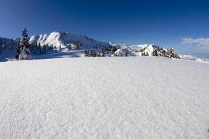 雪の写真素材 [FYI00122332]