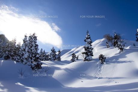 雪山の写真素材 [FYI00122345]
