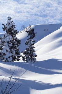 雪山の写真素材 [FYI00122369]