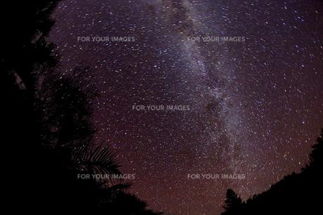 亜熱帯でみた星空の写真素材 [FYI00122375]