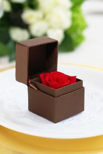 薔薇の写真素材 [FYI00122445]