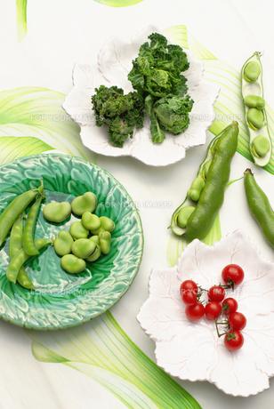野菜の写真素材 [FYI00122491]