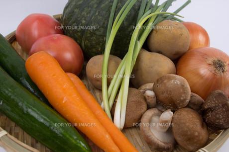 野菜の盛り合わせの素材 [FYI00122823]