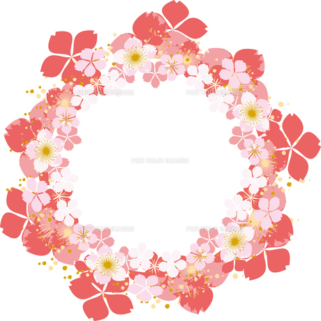桜のフレームの素材 [FYI00123239]
