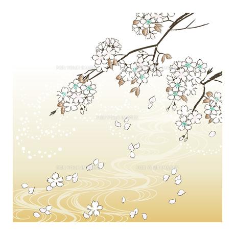 桜の素材 [FYI00123258]