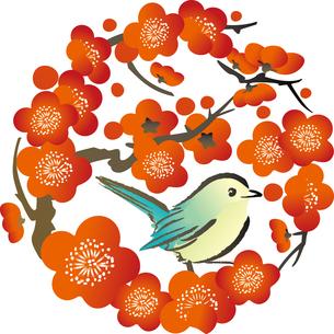 梅とうぐいすの素材 [FYI00123259]