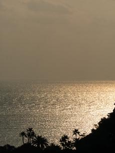 日南海岸の写真素材 [FYI00123610]