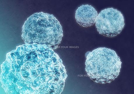 virusの写真素材 [FYI00123697]