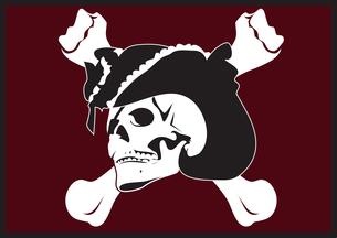 海賊旗の写真素材 [FYI00123713]