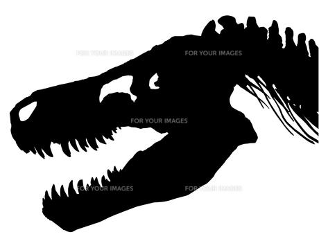 Tyrannosaurus's silhouetteの写真素材 [FYI00123720]