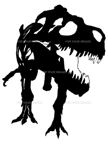 Tyrannosaurus's silhouetteの写真素材 [FYI00123721]