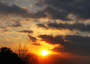 skyの写真素材 [FYI00123725]