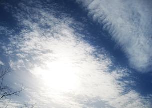 skyの写真素材 [FYI00123740]