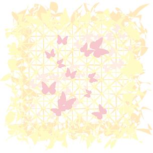 蝶が舞うテクスチャーの写真素材 [FYI00123754]