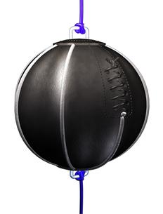 パンチングボールの写真素材 [FYI00124001]