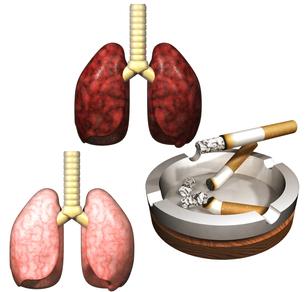喫煙の写真素材 [FYI00124233]