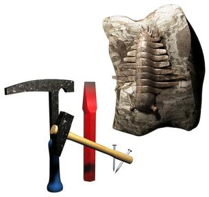 化石発見の写真素材 [FYI00124327]