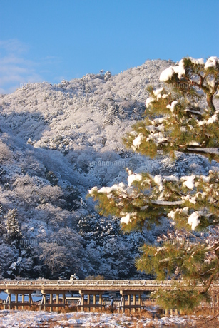 雪化粧の写真素材 [FYI00124538]
