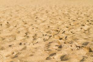 砂丘の表情の素材 [FYI00124762]