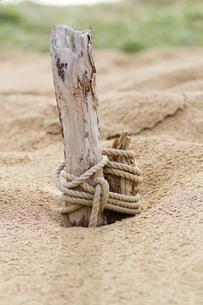 砂丘にささる杭にロープの写真素材 [FYI00124769]
