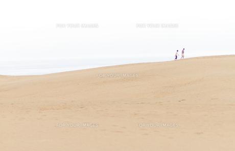 砂丘を歩くの写真素材 [FYI00124780]