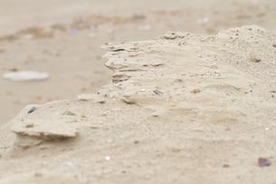 砂浜の丘の写真素材 [FYI00124808]