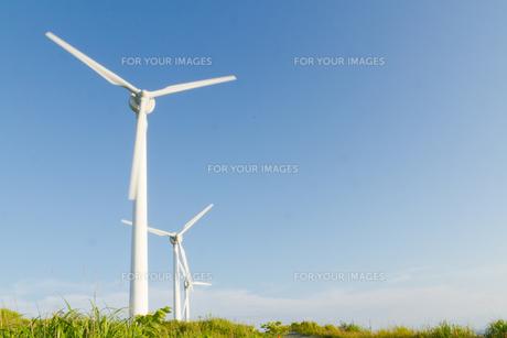 風力発電の写真素材 [FYI00124864]
