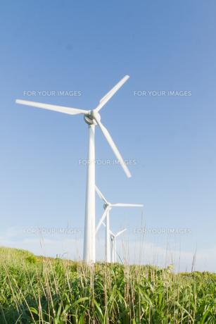 風力発電所の写真素材 [FYI00124866]