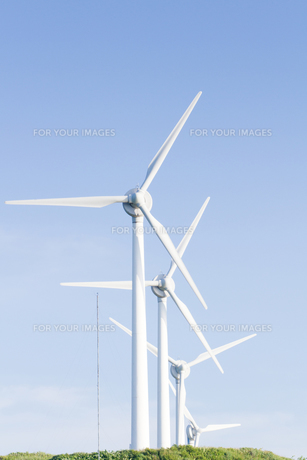 風力発電所の写真素材 [FYI00124873]
