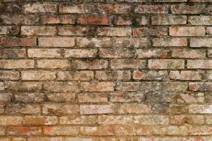 古レンガの壁の写真素材 [FYI00124914]