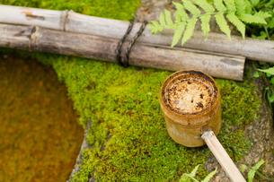 手洗鉢の水と竹の尺の写真素材 [FYI00124934]