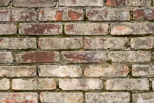 古いレンガ壁の写真素材 [FYI00124935]