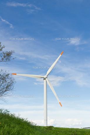 風力発電の写真素材 [FYI00125135]