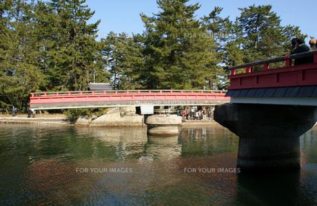 天橋立の写真素材 [FYI00125672]