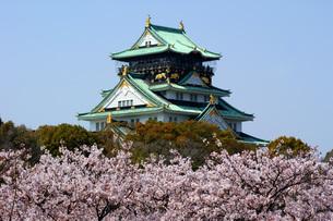 大阪城と桜の写真素材 [FYI00125676]
