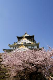 大阪城と桜の写真素材 [FYI00125677]
