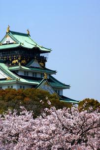 大阪城と桜の写真素材 [FYI00125678]