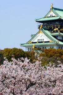大阪城と桜の写真素材 [FYI00125680]