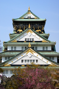 春の大阪城の写真素材 [FYI00125682]