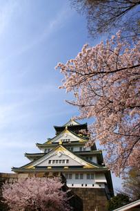 大阪城と桜の写真素材 [FYI00125689]