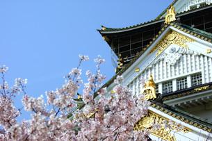 大阪城と桜の写真素材 [FYI00125718]
