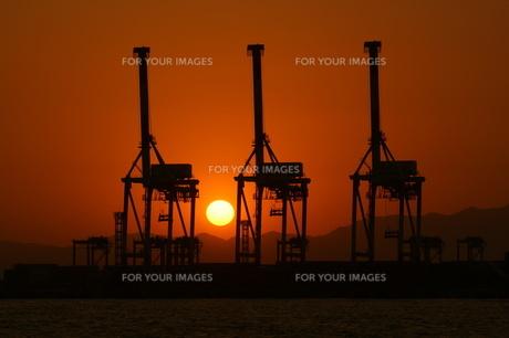 南港の夕景の写真素材 [FYI00125775]