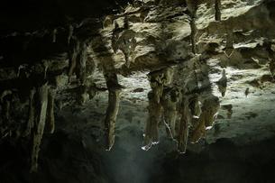 鍾乳洞の写真素材 [FYI00125840]