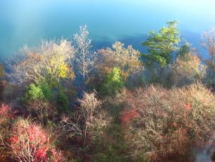 湖畔の鏡面現象の写真素材 [FYI00125844]